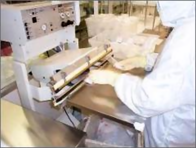 Cleanroom Bag Manufacturing (Photo)